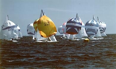 Soling Regatta
